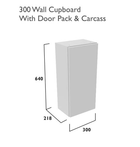 click on 300mm Single Door Wall Cabinet image to enlarge